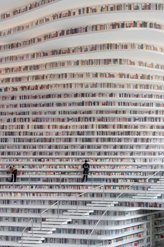 biblioteca-china04